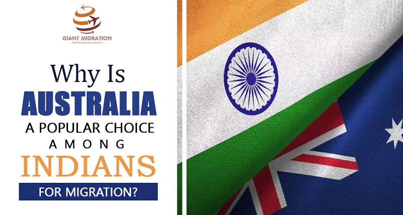 Best immigration consultants in delhi ncr